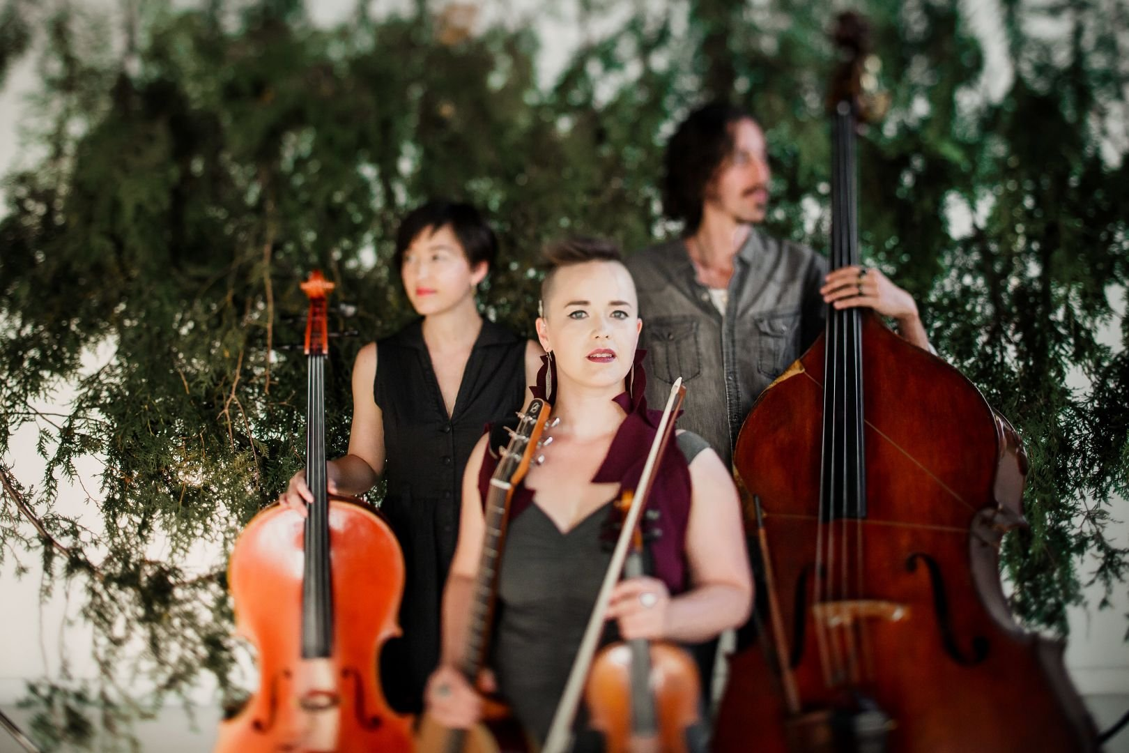 Raine Hamilton String Trio (MB)